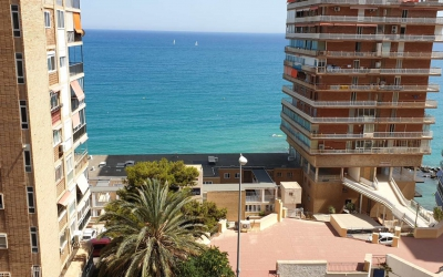 Appartement - Location - Alicante - Albufera